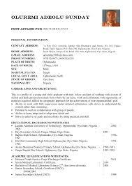 Starbucks Barista Job Description For Resume by Curriculum Vitae Curriculum Vitae Samples Nigeria