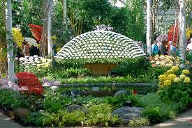 Information About Botanical Garden The New York Botanical Garden Book Things To Do Tours And
