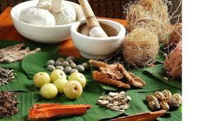 9 resep agar mr p kuat keras dan besar sehat cara herbal