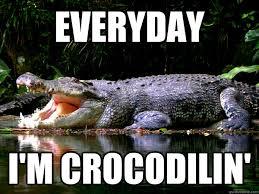 Crocodile Meme - cranky crocodile memes quickmeme