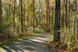 toll brothers at oak creek the hampton home design walking trails