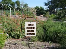 texas native plants database rain garden lake highlands community garden
