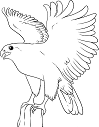 flying falcon bird coloring pages alphabet coloring pages of