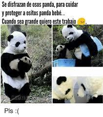Memes De Pandas - memes osos pandas memes pics 2018