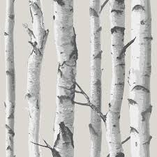 birch wood halloween background birch tree peel and stick wallpaper amazon com