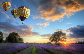 balloon delivery asheville nc diglocal balloons asheville