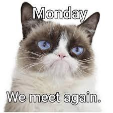 Good Grumpy Cat Meme - good morning everyone have an awesome day arizona pinterest