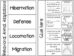 idioms and behavioral animal adaptations teaching science