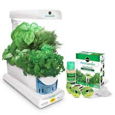 amazon com aerogarden sprout with gourmet herb seed pod kit