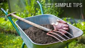 healthy fruits and veggies start from the ground up prepare beds