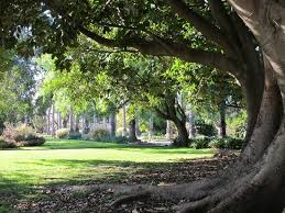 Williamstown Botanic Gardens Williamstown Botanic Gardens Cnr Osborne Giffard St
