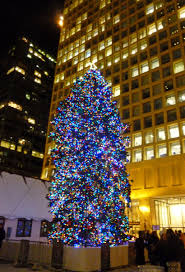 trees chicago lights decoration