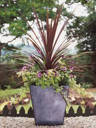 pots in gardens ideas best thriller plants for containers hgtv