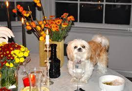 where to eat out for thanksgiving kdhamptons entertaining u0026 etiquette expert lara shriftman talks