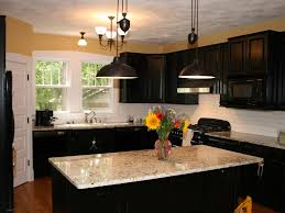 House Furniture Design Kitchen Kitchen 9 Amazing Kitchen Paint Color Ideas With White