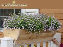 wood window boxes wooden flower boxes windowbox com