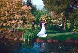 Vandusen Botanical Garden Wedding Special Events Wedding Pictures City Of Vancouver Archives
