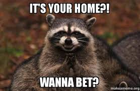 Wanna Bet Meme - it s your home wanna bet evil plotting raccoon make a meme