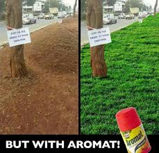 Grass Memes - funny memes and tweets from kidero grass hashtag