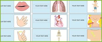 editable body parts labels ourselves resources free early