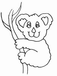 89 coloring koala bear 77 coloring pages images