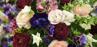 Cut Flower Garden by Dvflora Com Welcome To The New U0026 Improved Dvflora Com