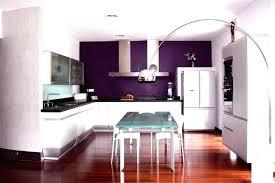 mur cuisine aubergine cuisine aubergine et gris cuisine blanche mur aubergine meuble
