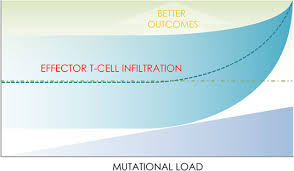 3004 10152 104 st nw mutation load and an effector t cell gene signature may distinguish