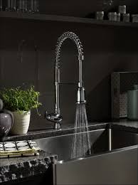 Chicago Faucet Kitchen Kitchen Commercial Faucets American Standard Kitchen Faucets