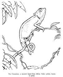 coloring pages elegant coloring pages drawings cute coloring