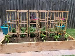 garden cage diy tomato cage tutorial for the organic garden sjpg