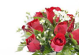 imagenes de feliz inicio de semana con rosas una rosa y mi cariño aquinosreunimospersonaspositivas gabitos