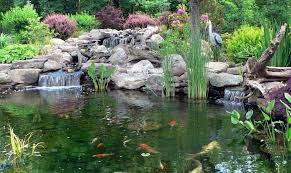 Cost Of Landscaping Rocks by How Much Does The Average Pond Cost Premier Ponds