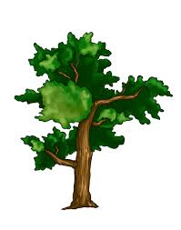 drawing trees images reverse search