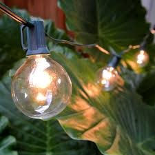 g50 globe string lights set clear c7 patio lights