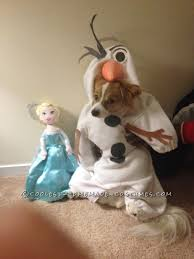 Olaf Costume Dog Costume Mochi As Olaf From Frozen