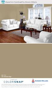 san antonio sage sherwin williams i think this is what i want for