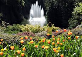 world renowned butchart gardens on vancouver island traveling