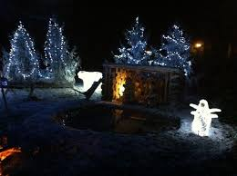 Some Christmas Decorations - some christmas decorations picture of center parcs longleat