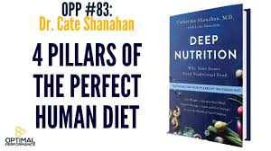 deep nutrition 4 pillars of the perfect human diet with dr cate