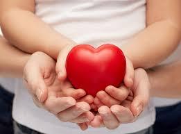 cape cod charities u0026 nonprofits