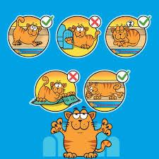 Cat Scratch Lounge Scratch Sofa Lounge Including Free Cat Nip Cardboard Scratcher Post