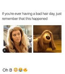 Bad Hair Day Meme - 25 best memes about bad hair day bad hair day memes