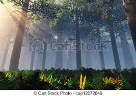 forest render deep forest 3d render drawing search clip art illustrations and