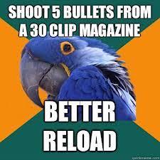 Paranoid Parrot Memes - read paranoid parrot memes the gear page