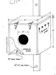 box house plans common nest box designs barn owl bird house plans utah box dr