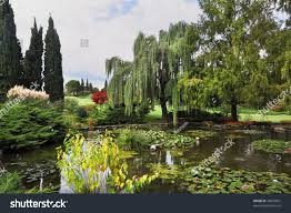 fabulously beautiful park ornamental pond colorful stock photo