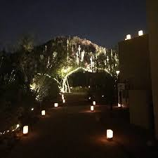 botanical gardens lights az nothing beats the arizona desert in the spring time picture of