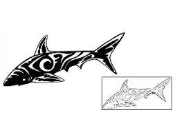 tattoo johnny shark tattoos
