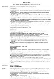 director of finance resume business u0026 operations director resume samples velvet jobs